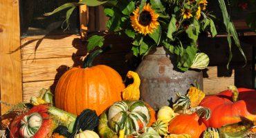 Erntedankfest – Bräuche rund um die Welt