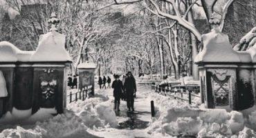 Die schönsten Fotos von New York im Schnee